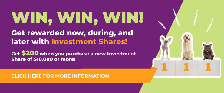 Win Win Win With Luminus Investment Shares